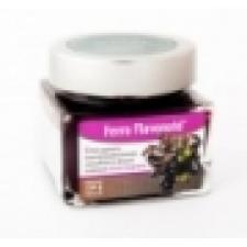 Ferro Flavonoid táplálékkiegészítő