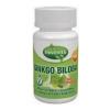 Innovita Ginkgo Biloba 80Mg Tabletta 90Db