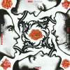 Red Hot Chili Peppers Blood Sugar Sex Magik (CD)