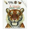 Sylvaine Peyrols A tigris
