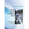 Csernok Attila MINT PATAK A SZIKLÁK KÖZT