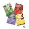 PIGNA HD Fruits füzet A4 42 lapos belső lapjai 90 g/m2 kockás