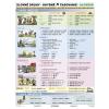 Stiefel Eurocart Kft. Szlovák igeragozás - oktatótabló