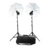 Profoto Studio Kit D1 250/250 Air