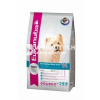 Eukanuba Adult West Highland White Terrier CKN 2,5 kg