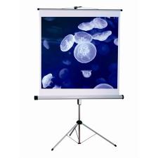VICTORIA Vetitővászon, hordozható, 1:1, 180x180 cm, VICTORIA vetítővászon