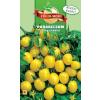 Földi-Módi Kft Paradicsom vetőmag (Sárga koktél) - 0,5 g
