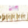. Girland, papír, virág alakú, csontfehér