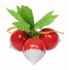 Goki Fa játék zöldség - retek