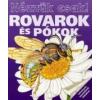 - ROVAROK ÉS PÓKOK