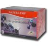 Naturland erdei gyümölcsös gyümölcstea, 20 filter