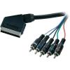 SpeaKa Professional RGB kábel SCART dugó/3 x RCA dugó, 2,5 m, fekete, SpeaKa Professional 50253