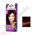 Schwarzkopf Palette Intensive Color Creme Krémhajfesték