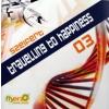 SZEIFERT - Travelling To Happiness 03 CD