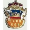 Erdély címer jelvény (aranyozott)