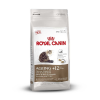 Royal Canin Ageing +12 (2kg)
