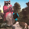 J.J. Cale Naturally LP