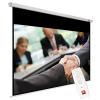 Vidis Avtek Business Electric 300P (300 x 227 5 cm) - 16:10