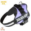 Julius-K9 K9-Powerhám, méret 2, lila