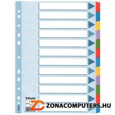 Regiszter, laminált karton, A4, 12 részes, ESSELTE