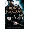 Harry Sidebottom A Borostyánút