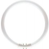 Philips MASTER TL5 Circular 40W/840 T5 [16mm] fehér körfénycső 2GX13, C-t5
