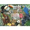 Kifestő készlet vászonra, akrilfestékkel, ecsettel, felnőtteknek - 28x36 cm - Állatkert