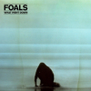 Foals What Went Down (Deluxe Edition) CD+DVD