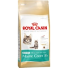 Royal Canin Kitten Maine Coon 4kg
