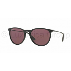 Ray-Ban RB4171 601/5Q ERIKA BLACK POLAR PURPLE napszemüveg (RB4171__601_5Q)