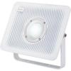 LED-es kültéri fényszóró 50 W Hidegfehér Renkforce
