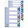 ESSELTE Printable indexes: plastic PP Esselte A4/12 colours 5902812152623