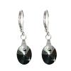 BALCANO Swarovski kristály fülbevaló (ES935)