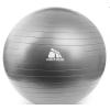 Meteor Fitnesz labda pumpával 75cm ezüst