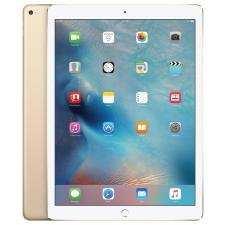 Apple iPad Pro Wi-Fi 256GB tablet pc