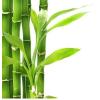 Bambuszrost liszt 1kg Paleolit