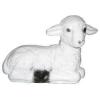 Bárány-fekvő-20 cm