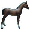 Ló-145 cm/csikó/sötét barna