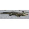 Krokodil-315cm