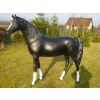 Ló-183 cm/fekete