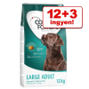 Concept for Life 12 + 3 kg ingyen! 15 kg Concept for Life - Large Sensitive