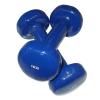 Egykezes súlyzó - 2 x 1 kg