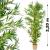 OEM Műnövény - Bambusz 220 cm