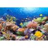 Castorland puzzle 1000 db-os - Korallsziget