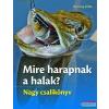 Saxum Kiadó Mire harapnak a halak?