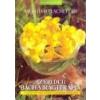 Gyógyforrás Az eredeti Bach-virágterápia - Mechthild Scheffer