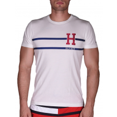 TommyHilfiger LUKAS TEE S/S RF T-shirt (887894191_0118)
