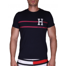 TommyHilfiger LUKAS TEE S/S RF T-shirt (887894191_0416)