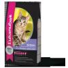 Eukanuba Kitten 10kg