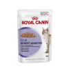 Royal Canin Wet Digestive Sensitive 12*85g